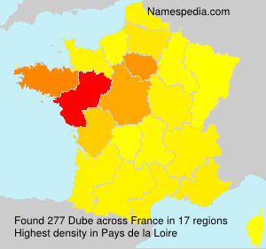 Surname Dube in France