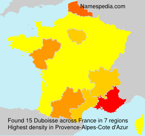 Surname Duboisse in France