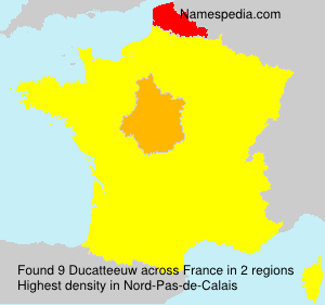 Surname Ducatteeuw in France
