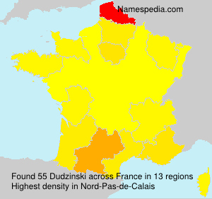 Surname Dudzinski in France