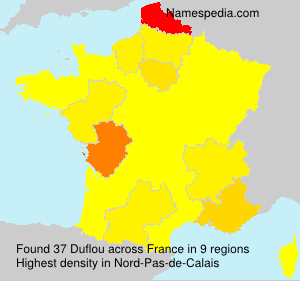 Surname Duflou in France