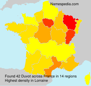 Surname Duvot in France