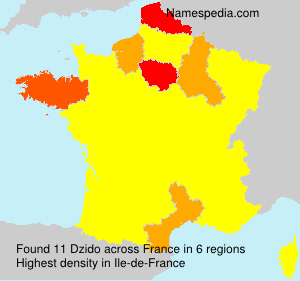 Surname Dzido in France