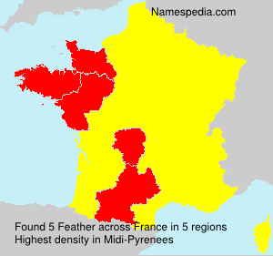 Surname Feather in France