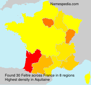 Surname Feltre in France