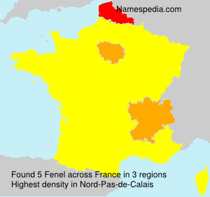 Surname Fenel in France