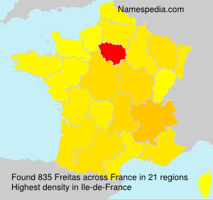 Surname Freitas in France