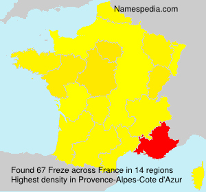 Surname Freze in France