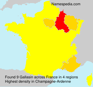 Surname Gallasin in France