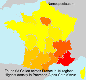 Surname Gallea in France