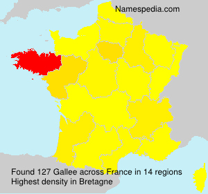 Surname Gallee in France