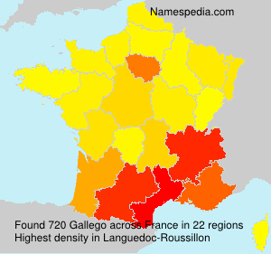 Surname Gallego in France