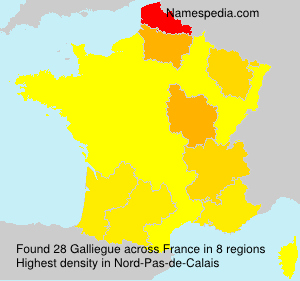 Surname Galliegue in France