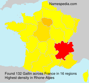 Surname Gallin in France
