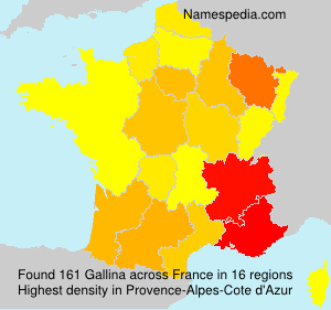 Surname Gallina in France