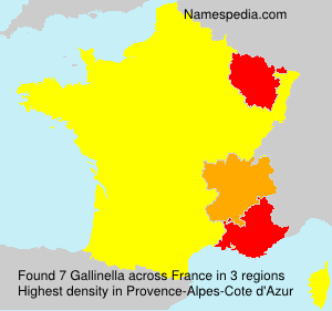 Surname Gallinella in France