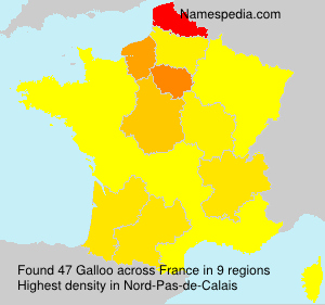 Surname Galloo in France