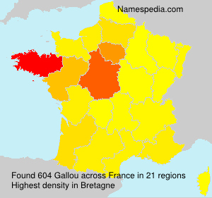 Surname Gallou in France