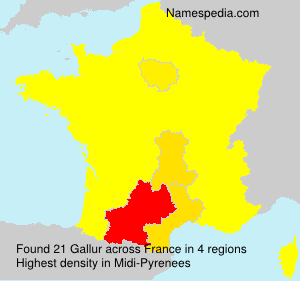 Surname Gallur in France