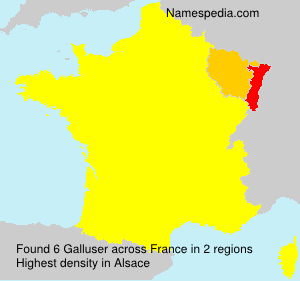 Surname Galluser in France
