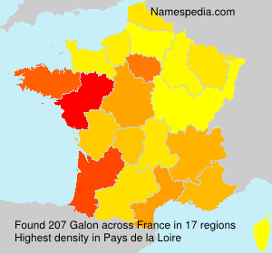 Surname Galon in France