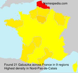 Surname Galuszka in France