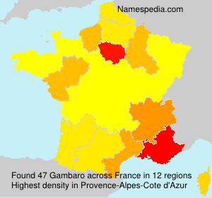 Surname Gambaro in France