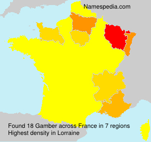 Surname Gamber in France