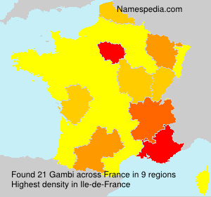 Surname Gambi in France