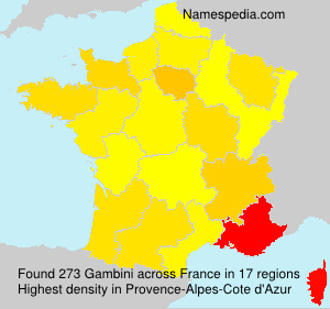Surname Gambini in France