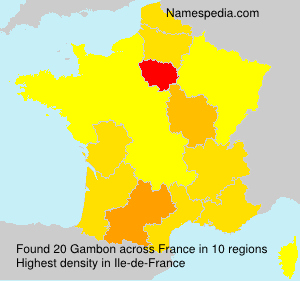 Surname Gambon in France