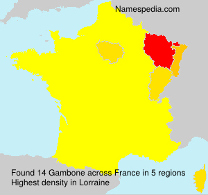 Surname Gambone in France