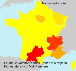 Surname Gamboni in France