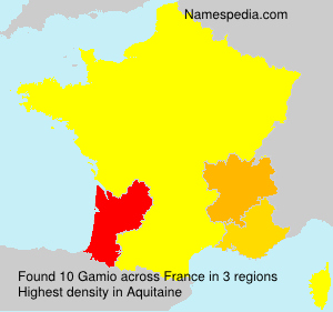 Surname Gamio in France