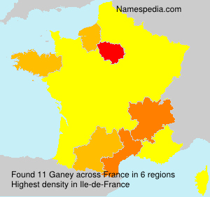 Surname Ganey in France