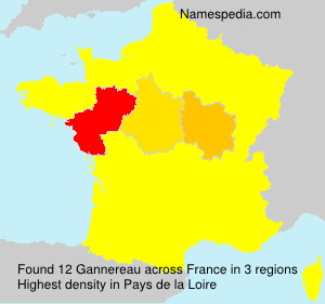 Surname Gannereau in France