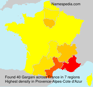 Surname Gargani in France