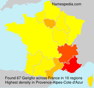 Surname Gariglio in France
