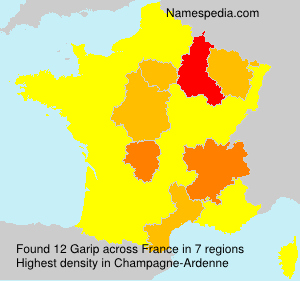 Surname Garip in France