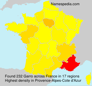 Surname Garro in France