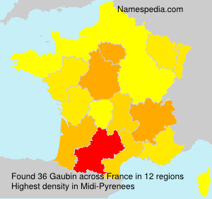 Surname Gaubin in France