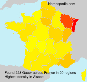 Surname Gauer in France