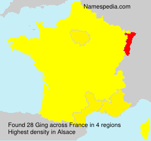 Surname Ging in France