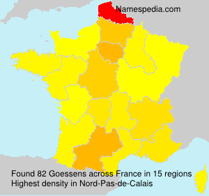 Surname Goessens in France