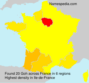 Surname Goh in France