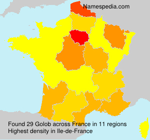 Surname Golob in France