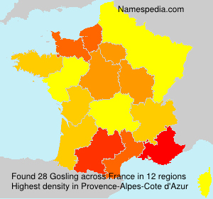 Surname Gosling in France
