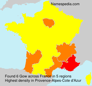 Surname Gow in France