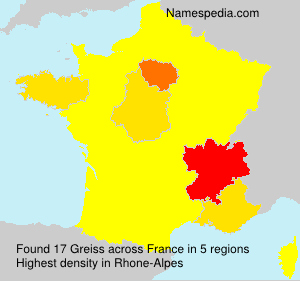 Surname Greiss in France