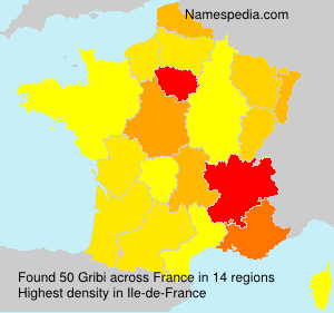 Surname Gribi in France